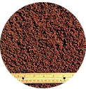 Coir: Common forms and applications