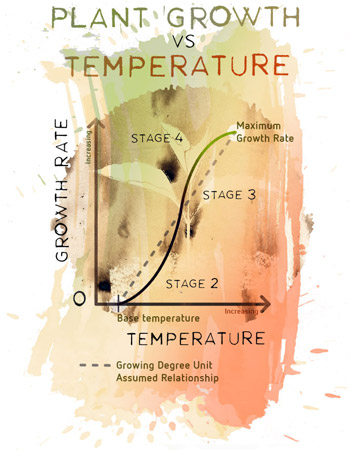 Making temperature work for success