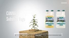 CANNA Substra Vega