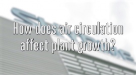 How does air circulation affect plant growth?