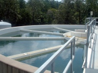 Growing on recirculating systems